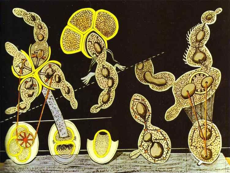 Max Ernst. The Gramineous Bicycle Garnished with Bells the Dappled Fire Damps and the Echinoderms Bending the Spine to Look for Caresses.