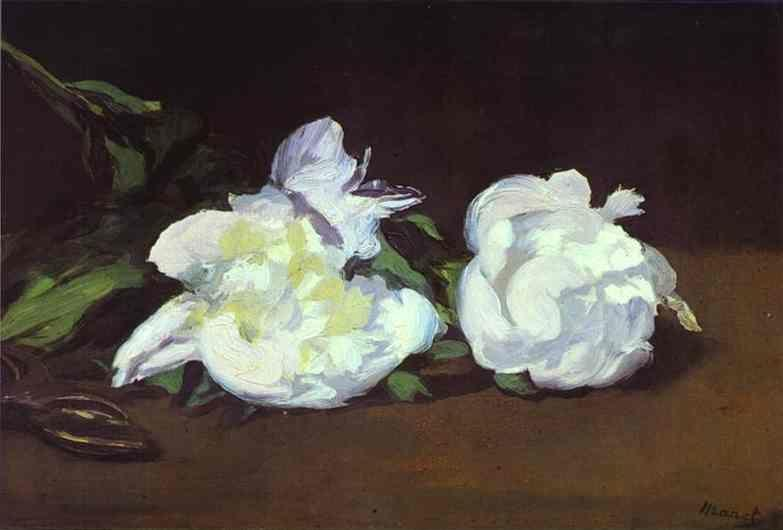 Edouard Manet. Branch of White Peonies and  Shears.