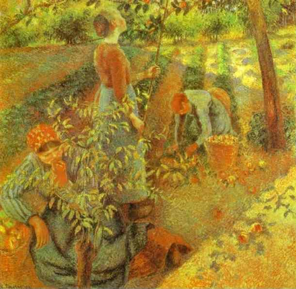 Camille Pissarro. Apple Picking.