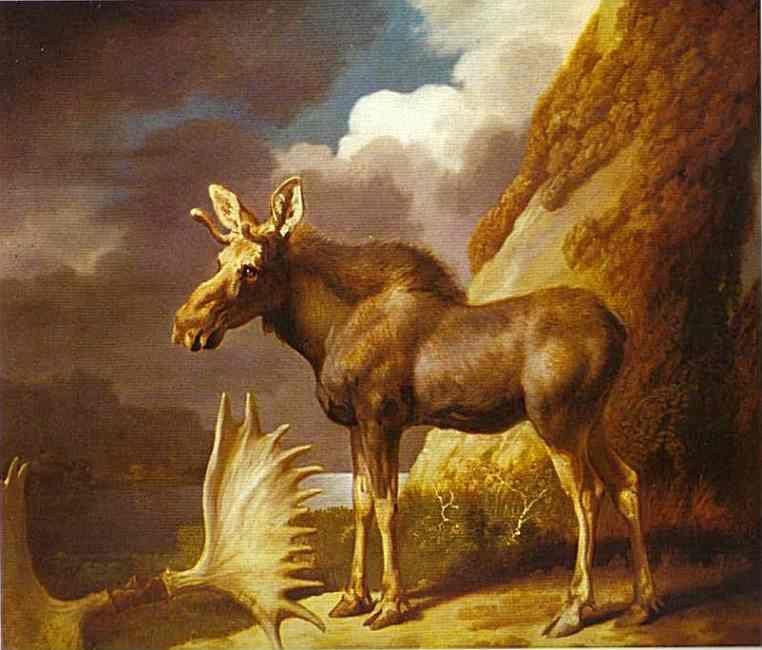 George Stubbs. The Moose.