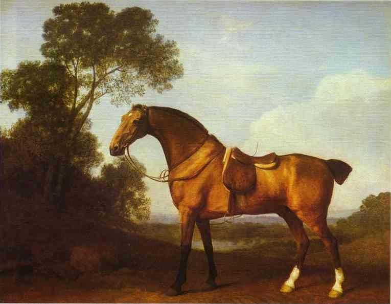 George Stubbs. A Saddled Bay Hunter.