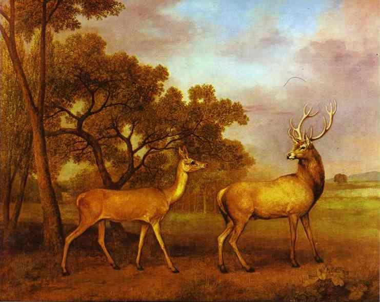 George Stubbs. Red Deer Stag and Hind.