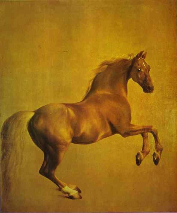 George Stubbs. Whistlejacket.