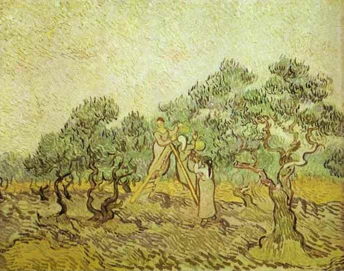 Vincent van Gogh. The Olive Orchard.