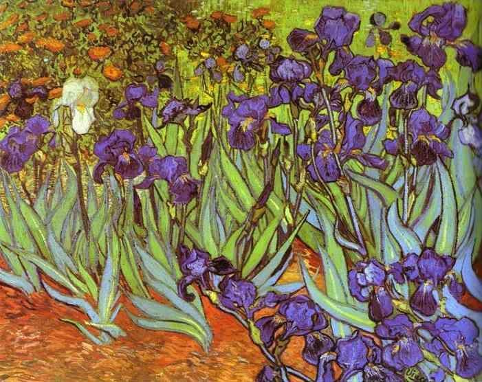 Vincent van gogh irises sait r my for Van gogh irises