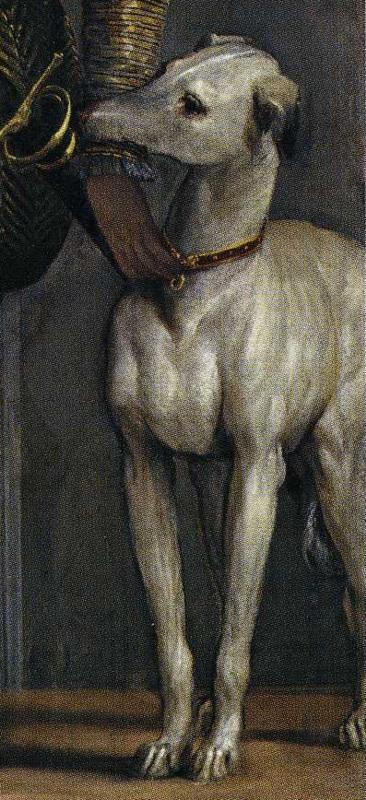 Paolo Veronese. Boy with a Greyhound. Detail.